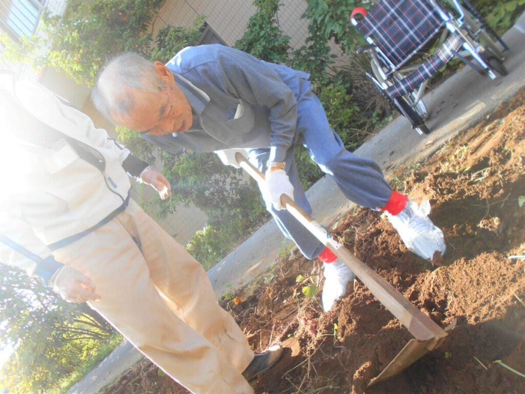 サツマイモの収穫作業を行いました!!!!!